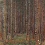Tannenwald I, 1901, Zug, Kunsthaus.