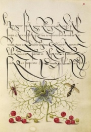 Joris Höfnagel, Mira Calligraphiae Monumenta, 1590, Los Angeles, J, Paul Getty Museum