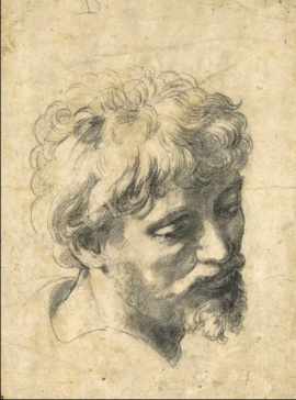 Raphael, Head of an Apostle, c.. 1519/20, Private Collection.
