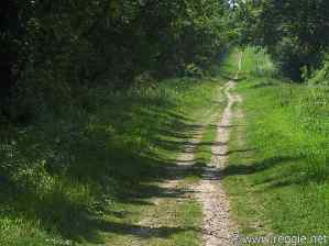 Unpaved road, Cambridgeshire