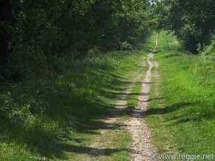 Unpaved road, Cambridgeshire
